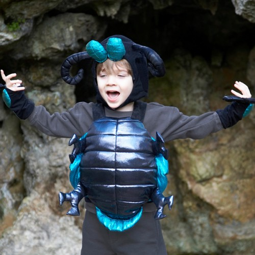 Alien Bug costume