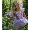 Butterfly Fairy Dress up by Design