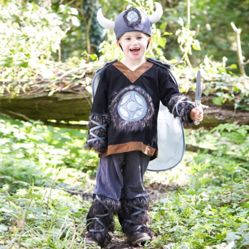 Viking Complete Costume